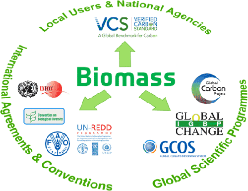 biomass_10_s.png